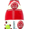 Gus (Grown-Up Soda) Dry Cranberry Lime - Soda Pop Stop