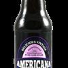 Americana Huckleberry Soda - Soda Pop Stop