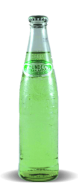 Sidral Mundet Manzana Verde/Green Apple Flavored Soda - Soda Pop Stop