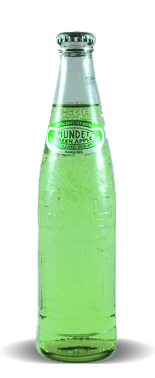 Sidral Mundet Manzana Verde/Green Apple Flavored Soda – Soda Pop Stop